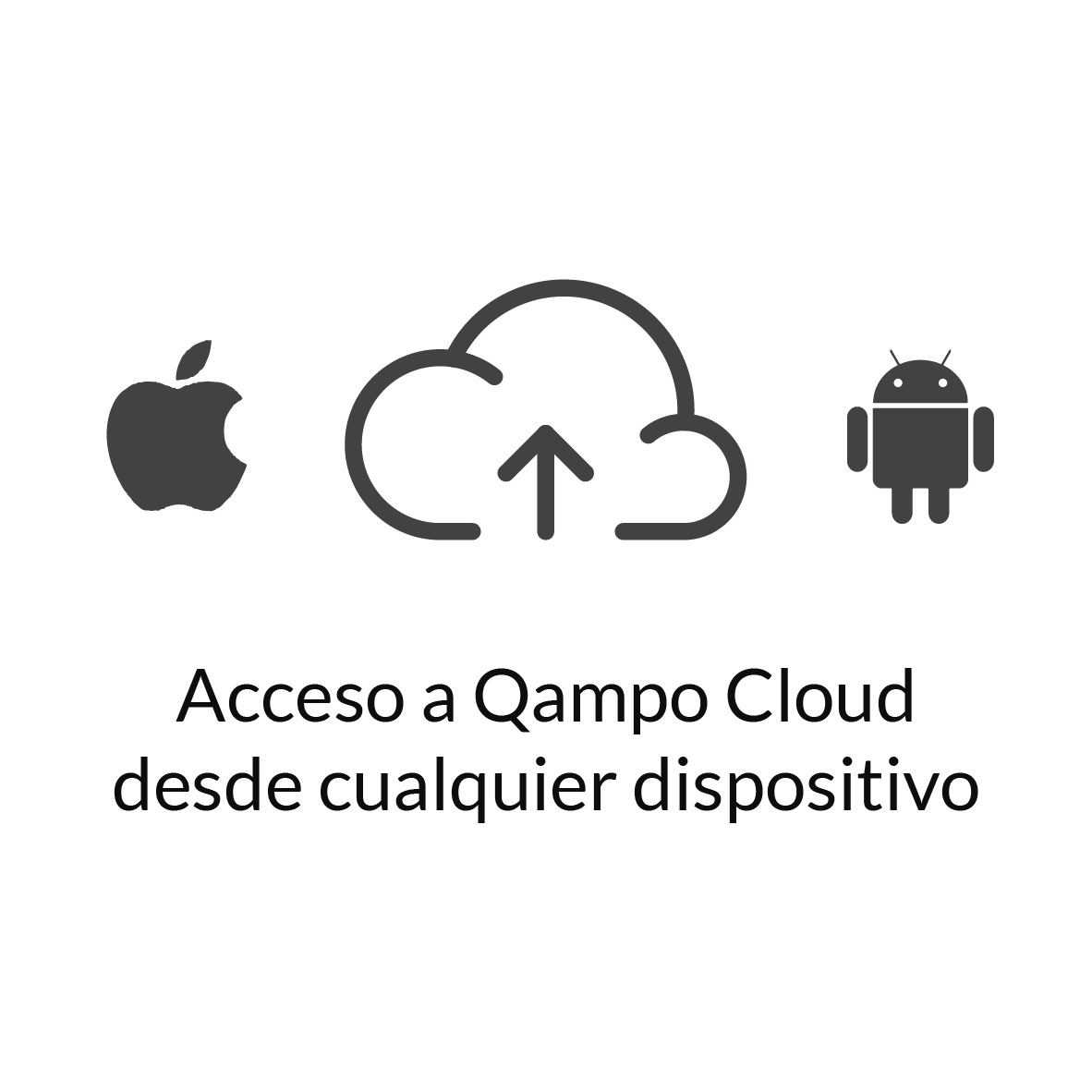 Acceso-Qampo-Cloud